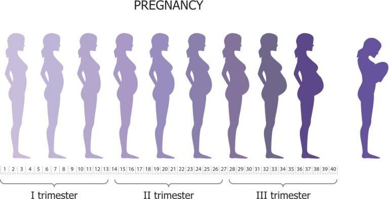 St. George Chiropractor, Prenatal Chiropractic St. George, Prenatal Pains